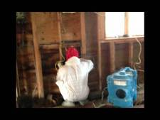 How To Treat Mold In Your Home