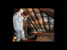 Mold Remediation New Jersey, Pennsylvania, Delaware