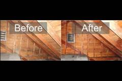 Attic Mold Remediation in PA, NJ, DE