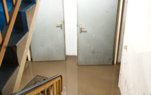 Water & Mold Restoration in New Jersey, Pennsylvania, & Delaware
